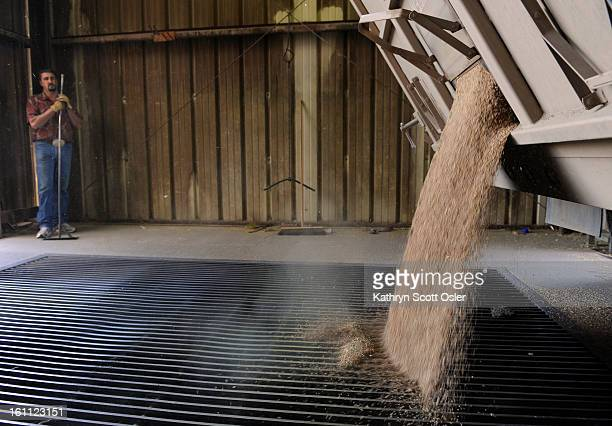 Wheat arrives at Commerce City Grain and workers for ConAgra Foods help to unload the wheat at the plant and onto outgoing trains headed for various...