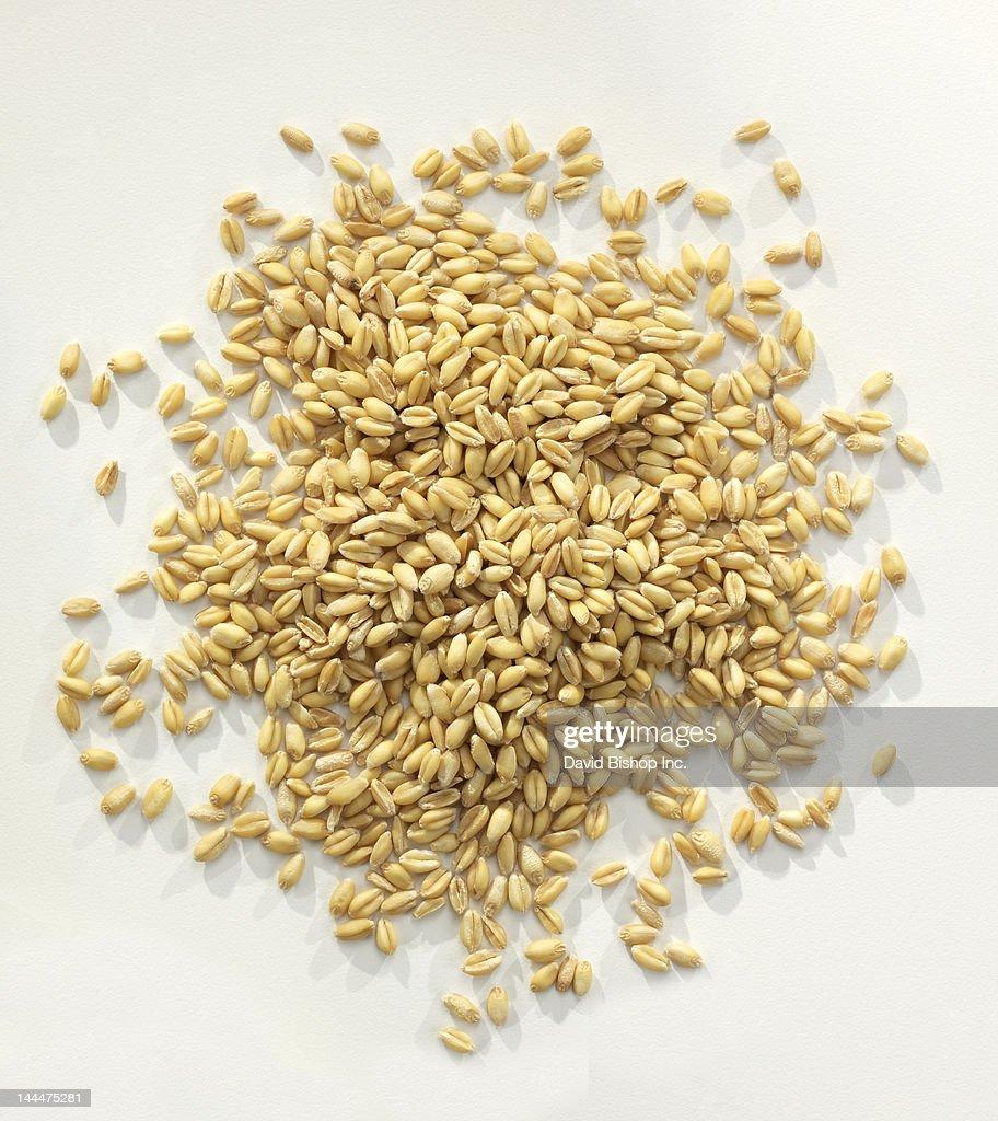 Wheat Berries_Whole Wheat Grains : Stock Photo