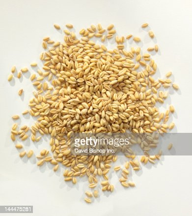 Wheat Berries_Whole Wheat Grains : Stock Photo