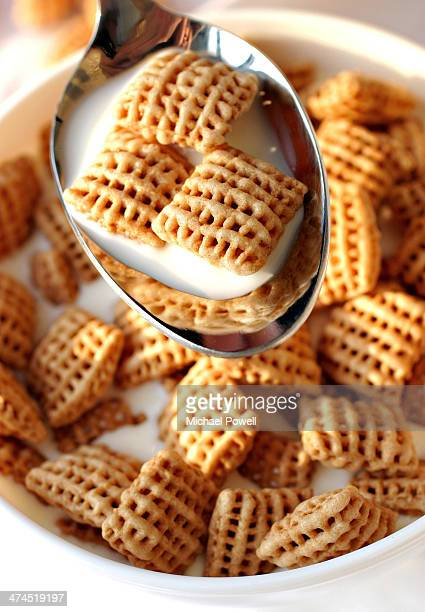 Wheat breakfast cereal on spoon with milk