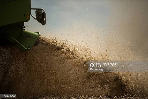 Wheat chaff falls from a combine harvester during harvesting in a field operated by Bonafarm Group in Kislippo Hungary on Wednesday July 10 2013 The...