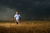 Wheat farmer Richard Heathcote on his property at Warrawong the day the Cole report on the AWB scandal was handed down 27 November 2006 SMH Picture...