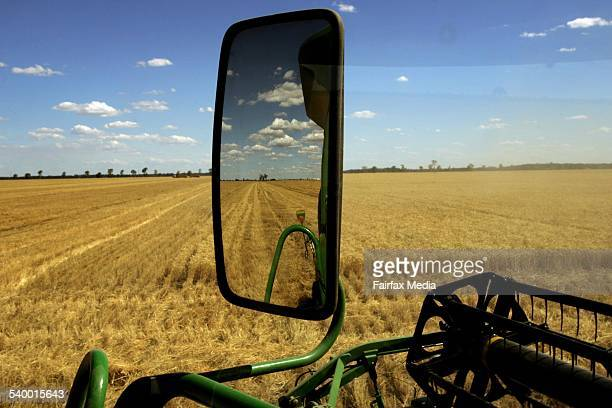A wheat field awaits harvesting from the windscreen of a harvester 17 November 2004 AFR Picture by TAMARA VONINSKI