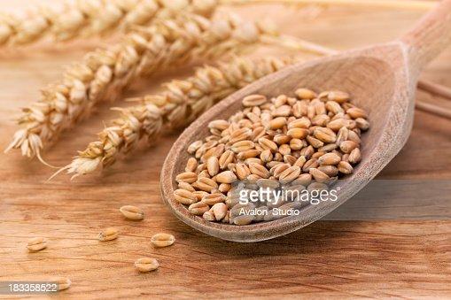 Wheat food