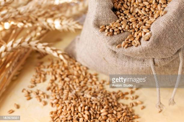 Wheat grain in the bag