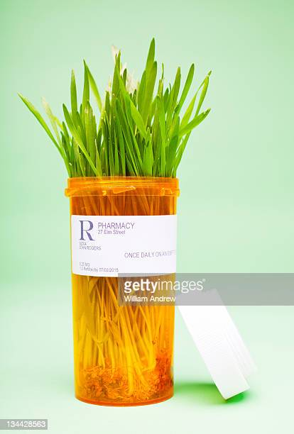 Wheat grass in medicine bottle