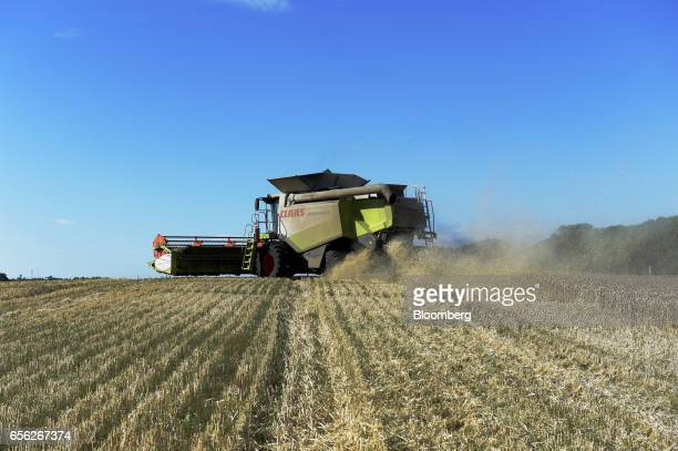 Wheat is harvested with a Claas KGaA Lexicon 580 R combine harvester at a farm near Drysdale Australia on Wednesday Feb 15 2017 Wheat shipments from...