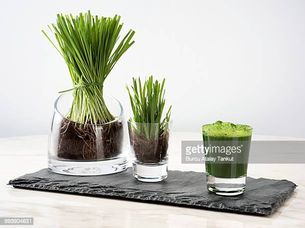how to drink frozen wheatgrass juice