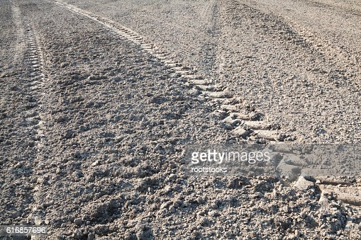 Wheel tracks on the ploughed field : Stock Photo