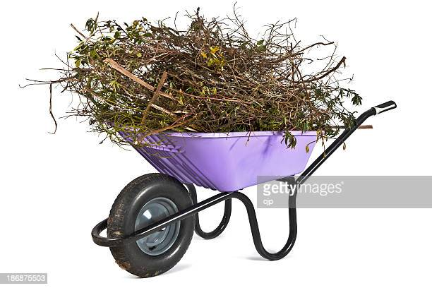 Wheelbarrow Full of Garden Clippings