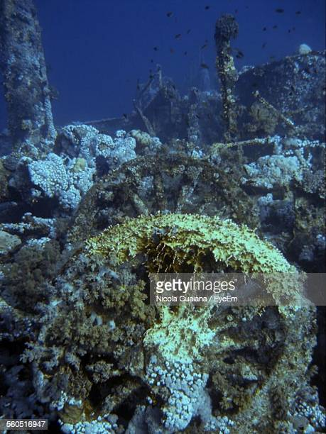 Wheels And Shipwreck Underwater