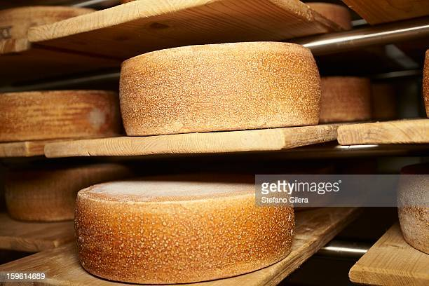 Wheels of cheese aging in shop