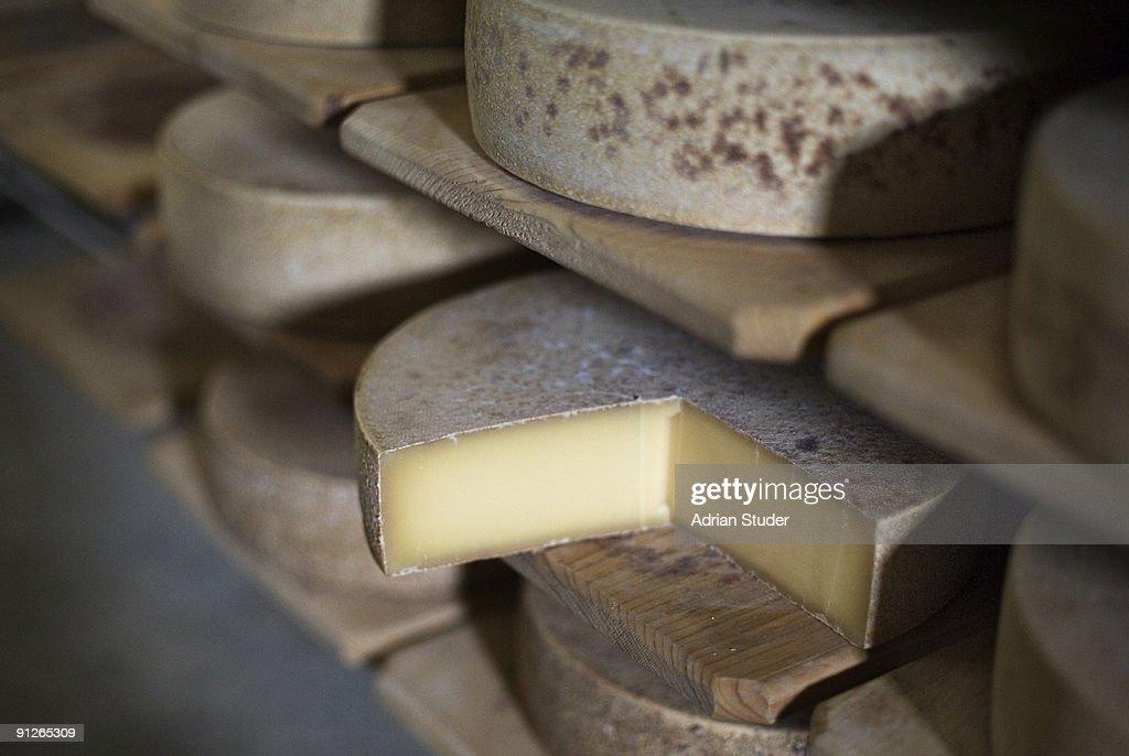 Wheels of Swiss mountain cheese : Stock Photo