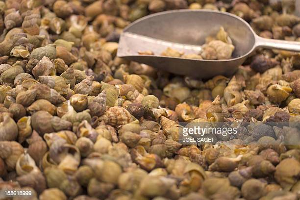 Whelks fished in the northeast Atlantic ocean are displayed at a supermarket on December 21 2012 at the KremlinBicetre outside Paris AFP PHOTO / JOEL...
