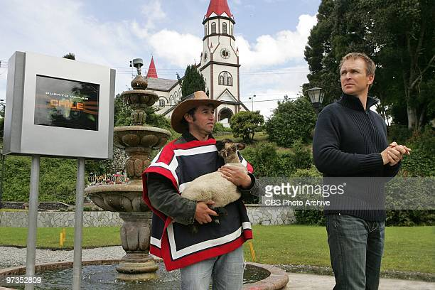 'When the Cow Kicked Me in the Head ' Host Phil Keoghan waits at the Pit Stop at the Wooden Cathedral in Puerto Varas Chile on THE AMAZING RACE...