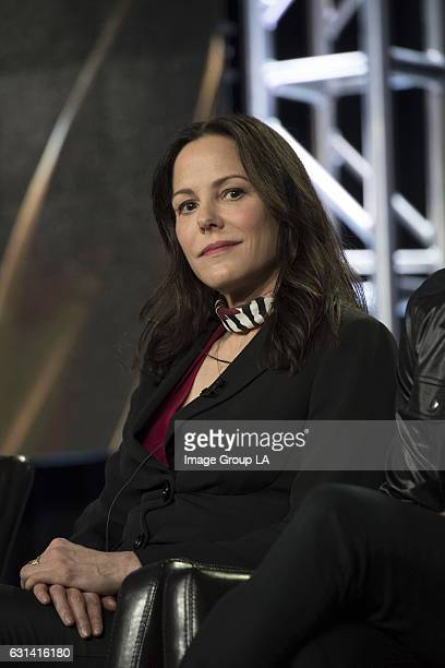 TOUR 2017 'When We Rise' Session The cast and executive producers of 'When We Rise' addressed the press at Disney | ABC Television Group's Winter...