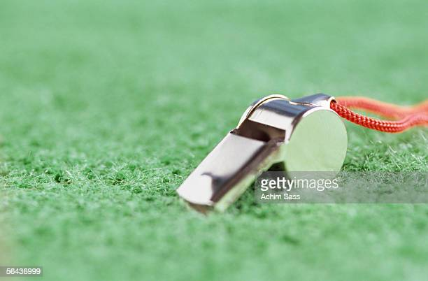 Whistle on grass, ground view