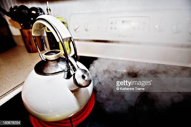 Whistling tea kettle stove