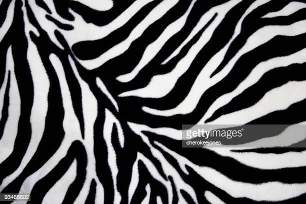 White and black zebra background