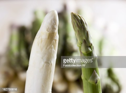 White and green asparagus : Stock Photo