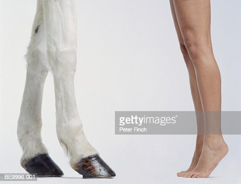 White Andalucian horse with woman on tiptoe, low section : Stock Photo