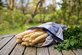 White asparagus sticks and herbs freshly harvested on a wooden table outdoors in the garden, selective focus, narrow depth of field