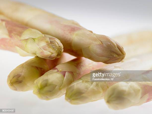 White asparagus on white background, close up