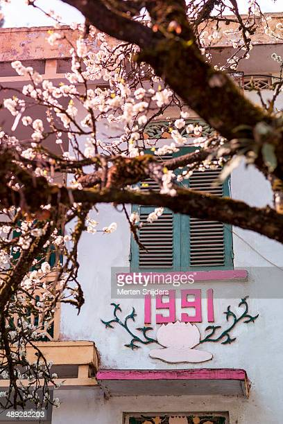 White blossom tree marked on wall