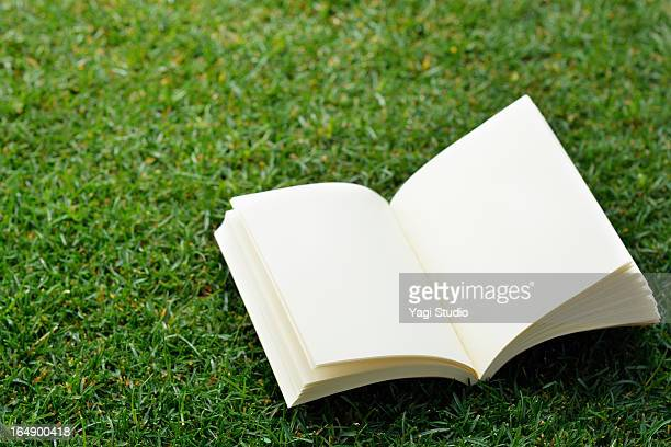 White book on the lawn