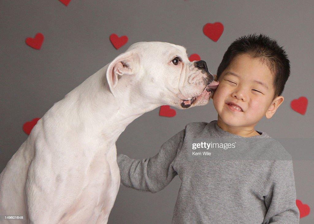 Resultado de imagen para white boxer licking