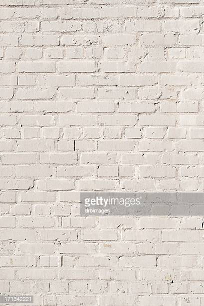 White Brick Wall Background - XXXL Photo