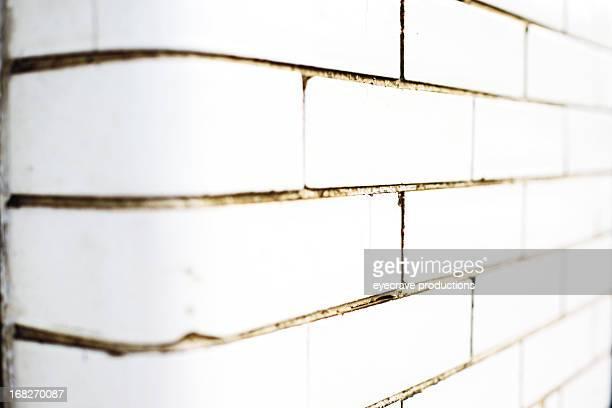 Briques en céramique blanc