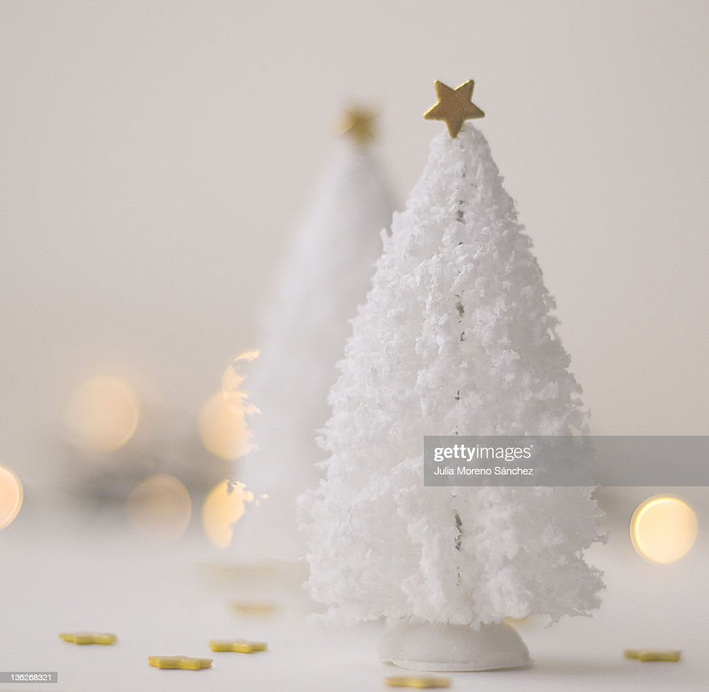 White Christmas tree with golden star : Stock Photo