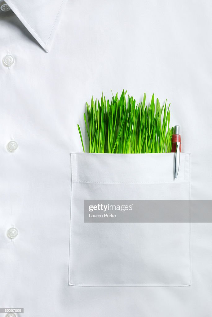 White Collar Shirt with Grass in Pocket