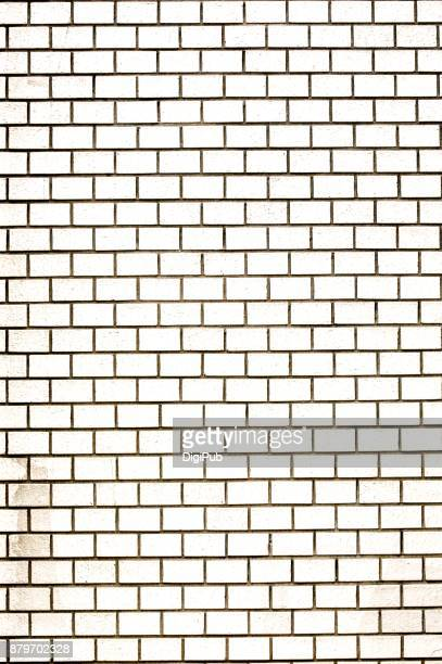 White Color Tiled Wall