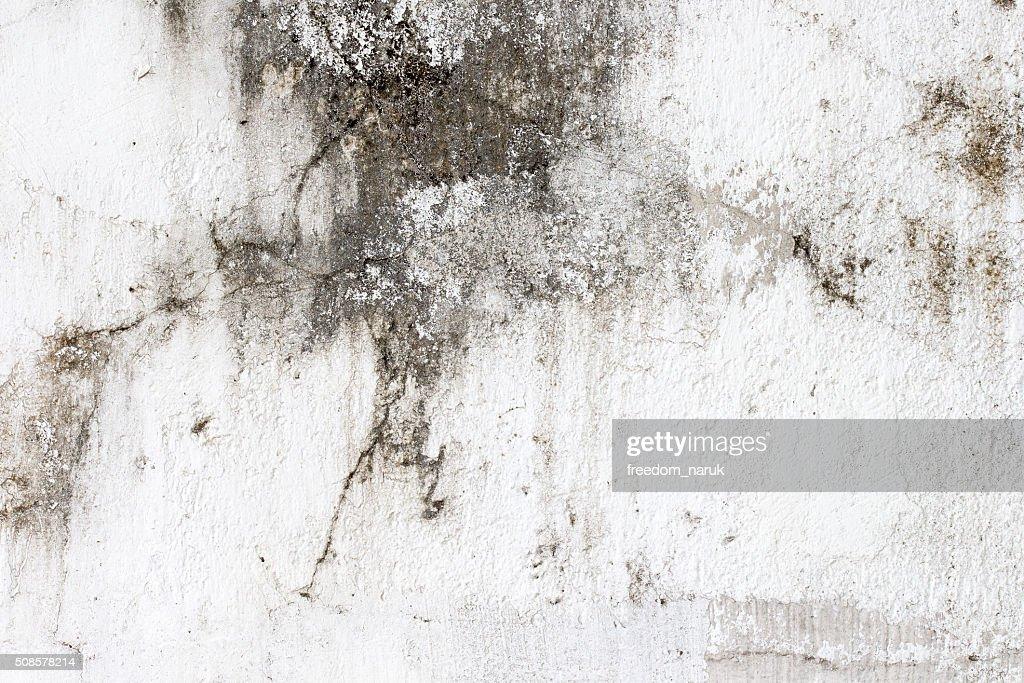 texture de mur en béton blanc : Photo
