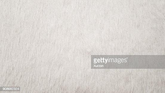 White Cowhide : Stock Photo