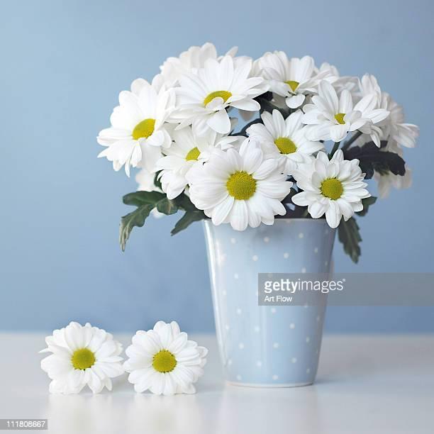 White Daisies In Blue Polka Dots Vase