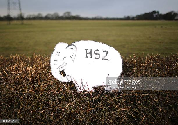 A white elephant placard placed by Joe Rukin from the Stop the HS2 Campaign sits in a hedegrow near to the planned location of the new HS2 high speed...