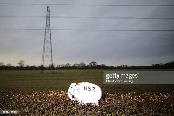 A white elephant placard sits in a hedegrow placed by Joe Rukin from the Stop the HS2 Campaign in a field near to the planned location of the new HS2...