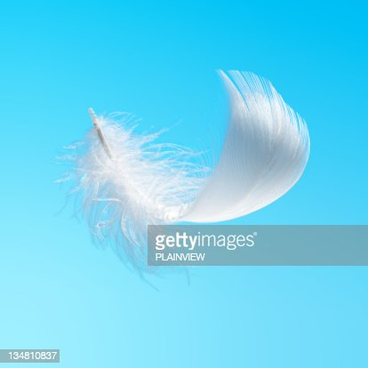 White feather in the sky