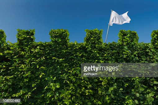 White Flag Raised above Turret Hedge