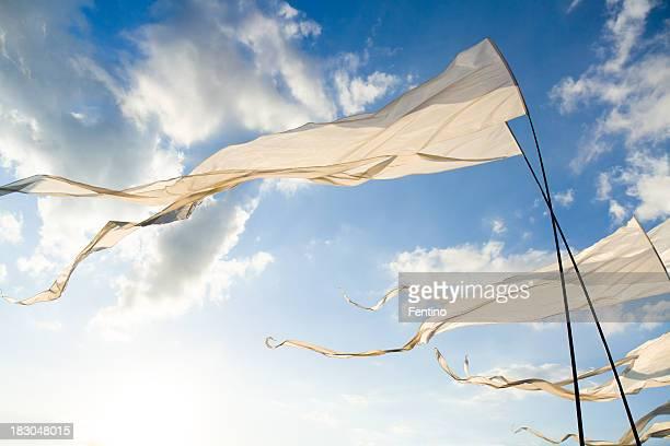 Drapeaux blanc contre le soleil