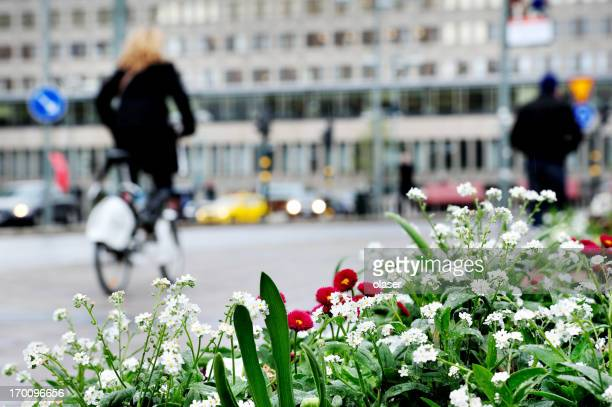 White flowers against city environment, blurred bicyclist and pedestrians