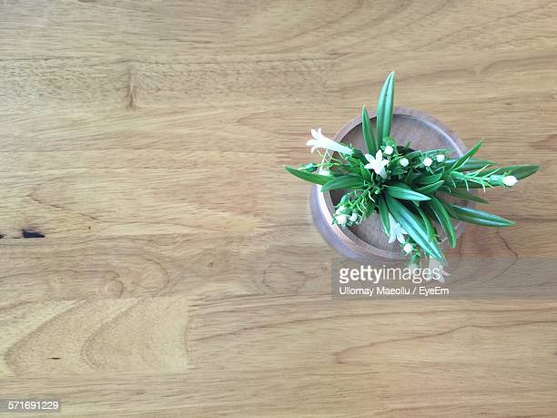 White Flowers In Wooden Vase On Table