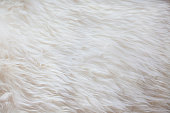 White fur texture background