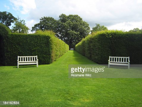 White garden benches and green hedges