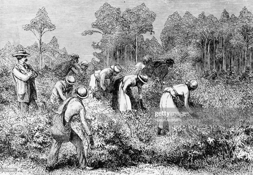 A white landowner overseeing black cotton pickers at work on a plantation in the southern USA circa 1875