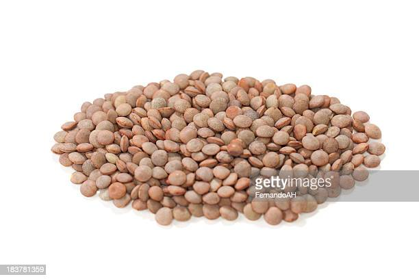 White lentil beans on a white background