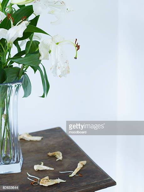 White lilies in vase on table, close up